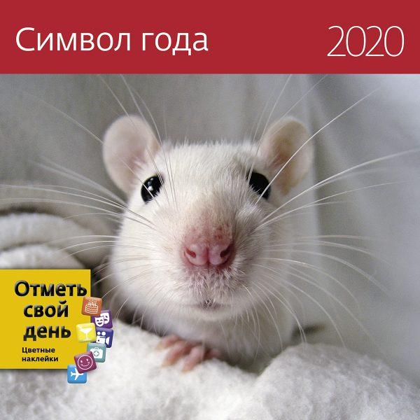 KO_RATS_Photo_290x290_20202обложка